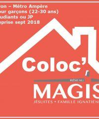 Coloc Magis Lyon 2ème